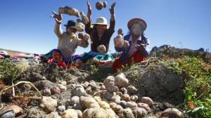 Diploma Estudios Agrarios Latinoamericanos