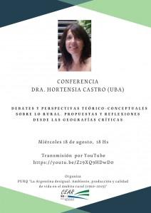 Flyer Videoconferencia